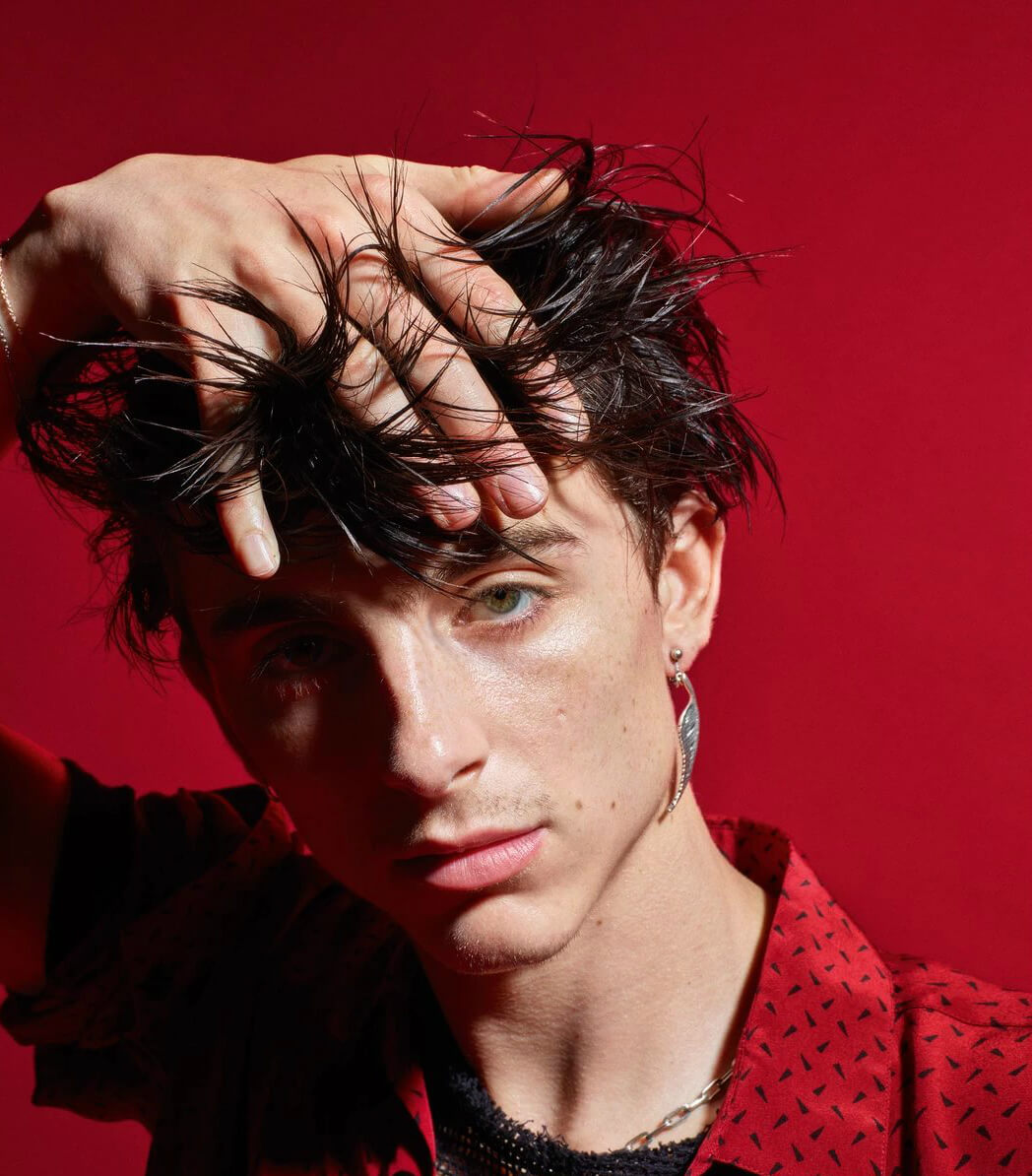 "Timothée Chalamet estará en la nueva película de Wes Anderson, ""The French Dispatch"""